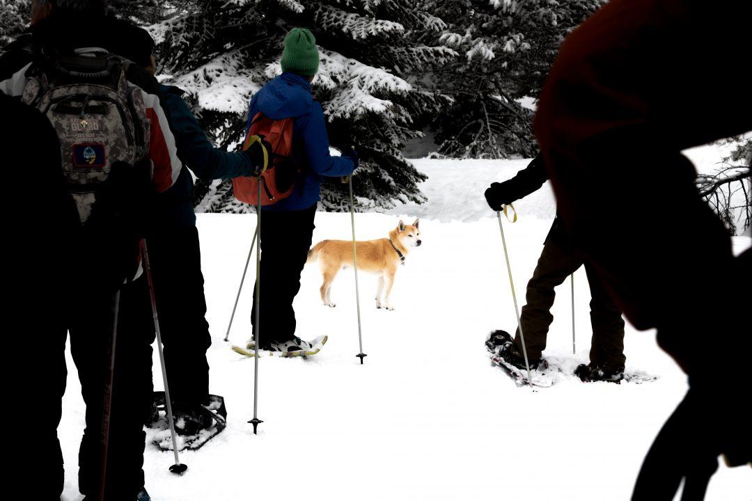 Lake Tahoe winter snowshoeing