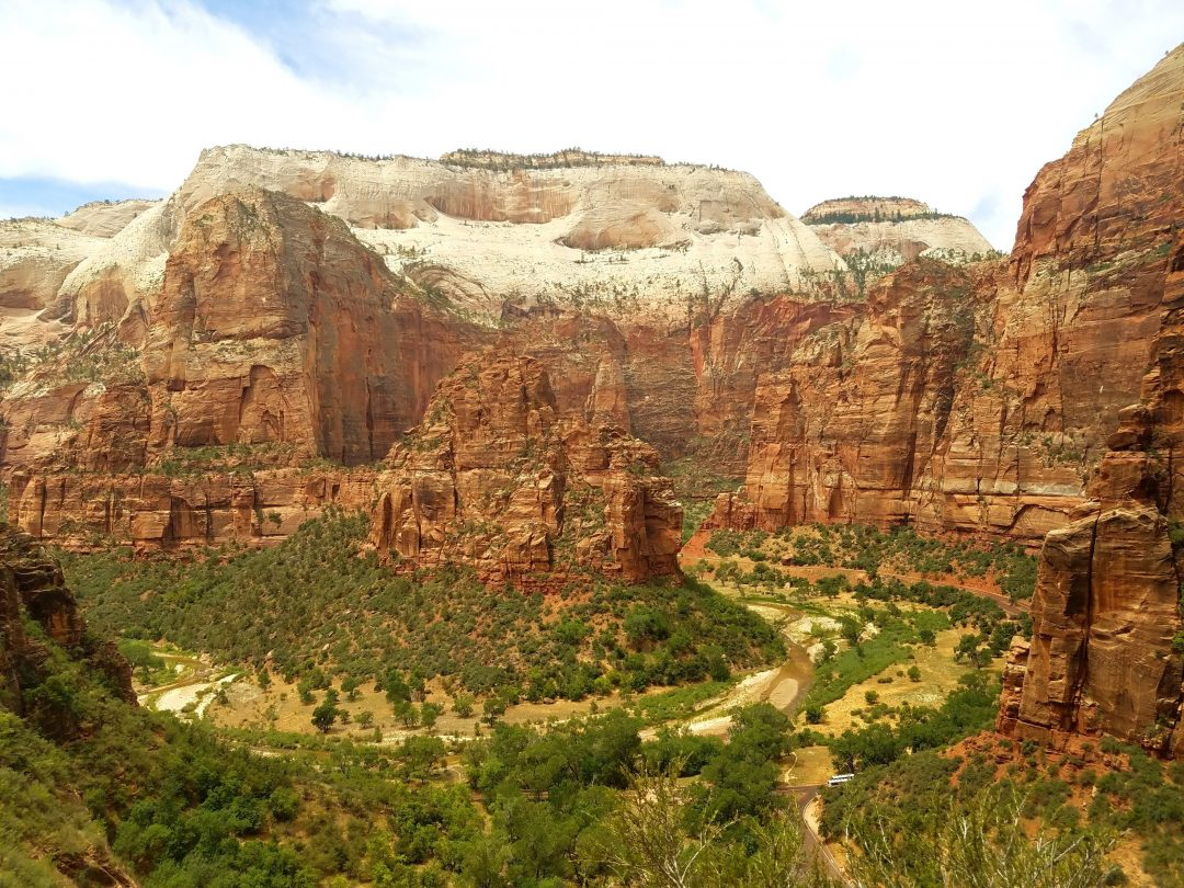 visiting zion national park in the spring