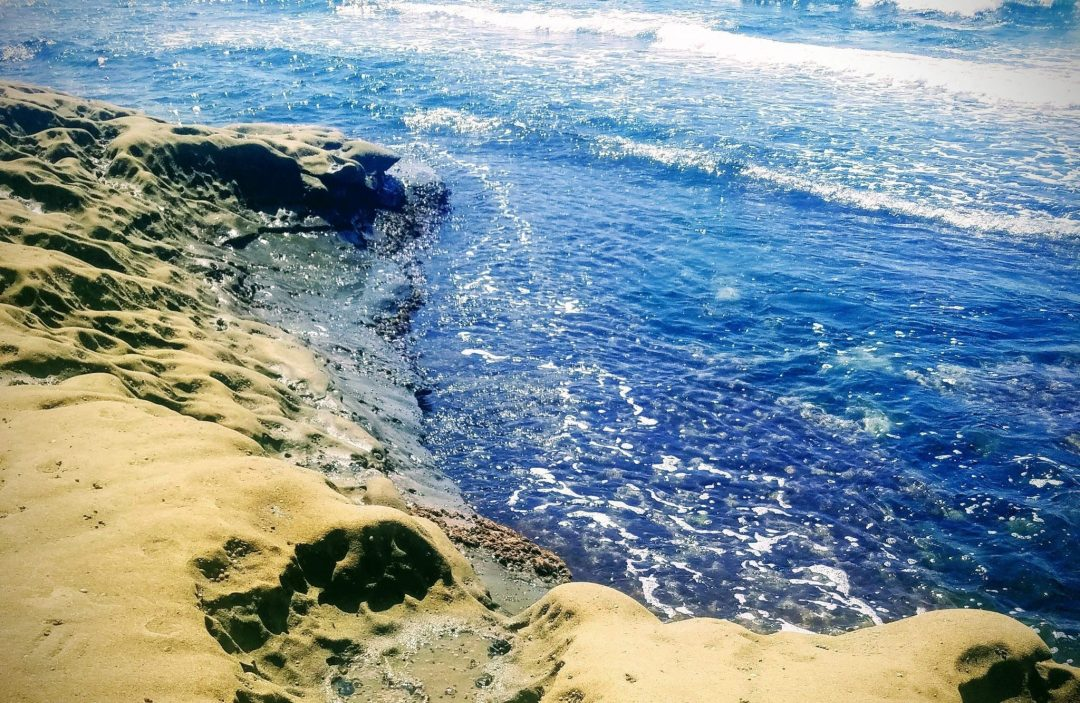 what to do in la jolla - underwater park