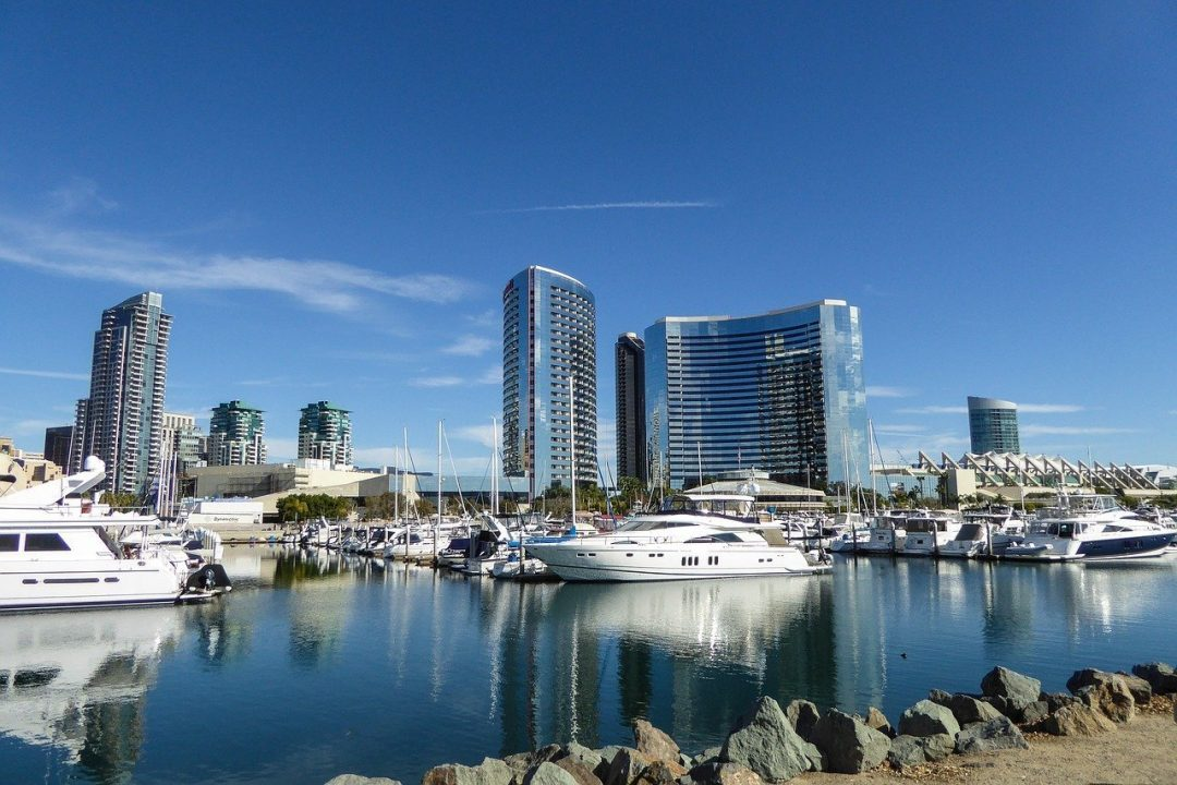 san diego bay - harbor tour or whale watching tour