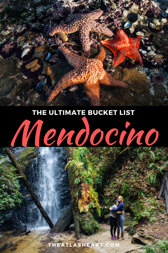 Best Things to do in Mendocino, California