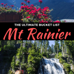 best things to do in mt rainier, washington