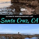 best things to do in santa cruz, california in winter
