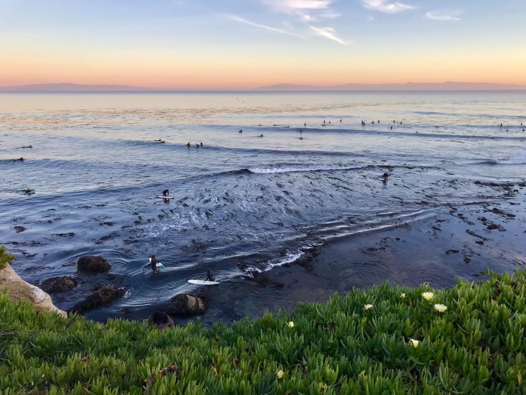 looking for cool things to do in santa cruz? How about a surf lesson.