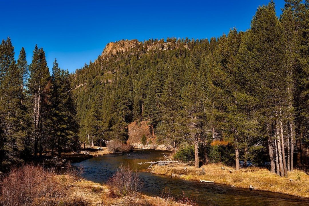 places to visit near sacramento - tahoe national forest