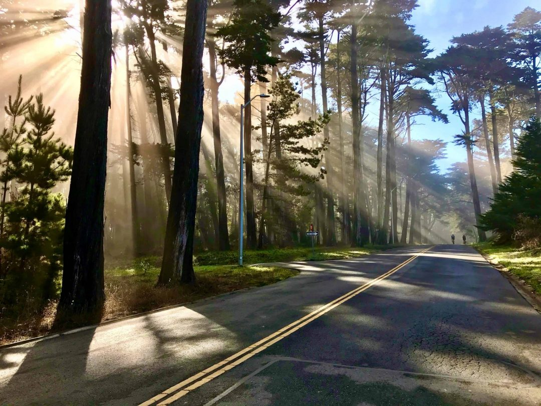 Presidio Promenade Trail in San Francisco