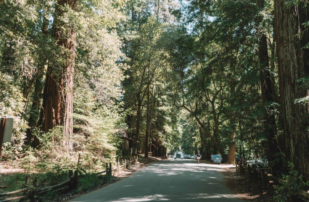 big basin redwoods state park parking