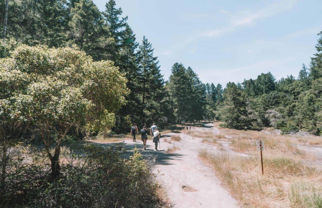 sequoia trail big basin - slippery rock