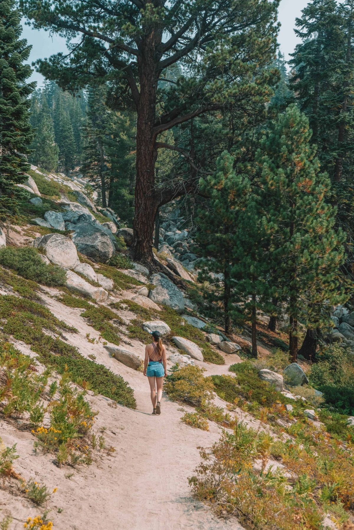 what to do in lake tahoe