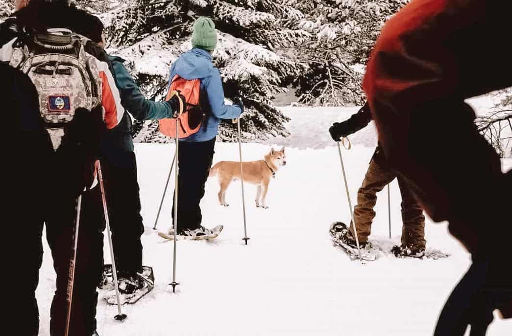 ake tahoe winter-snowshoeing