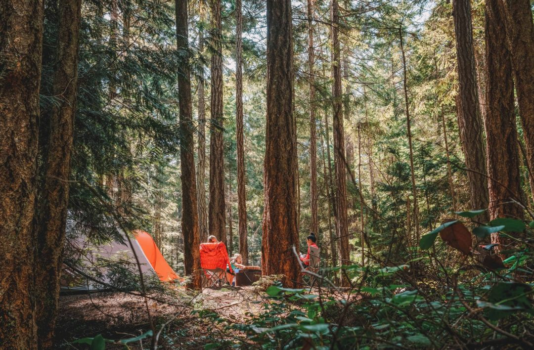 best 6 person tent for camping