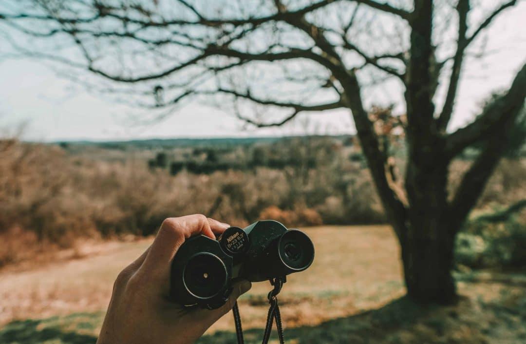 Types of compact binoculars