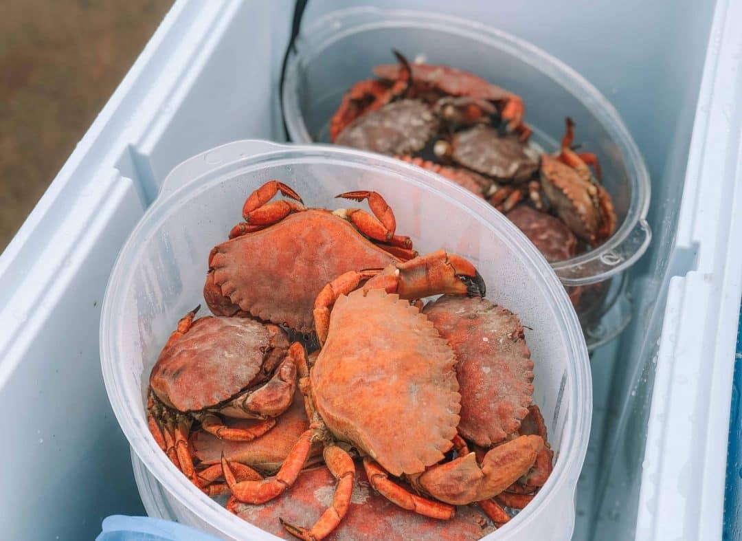 fresh crab in San Francisco