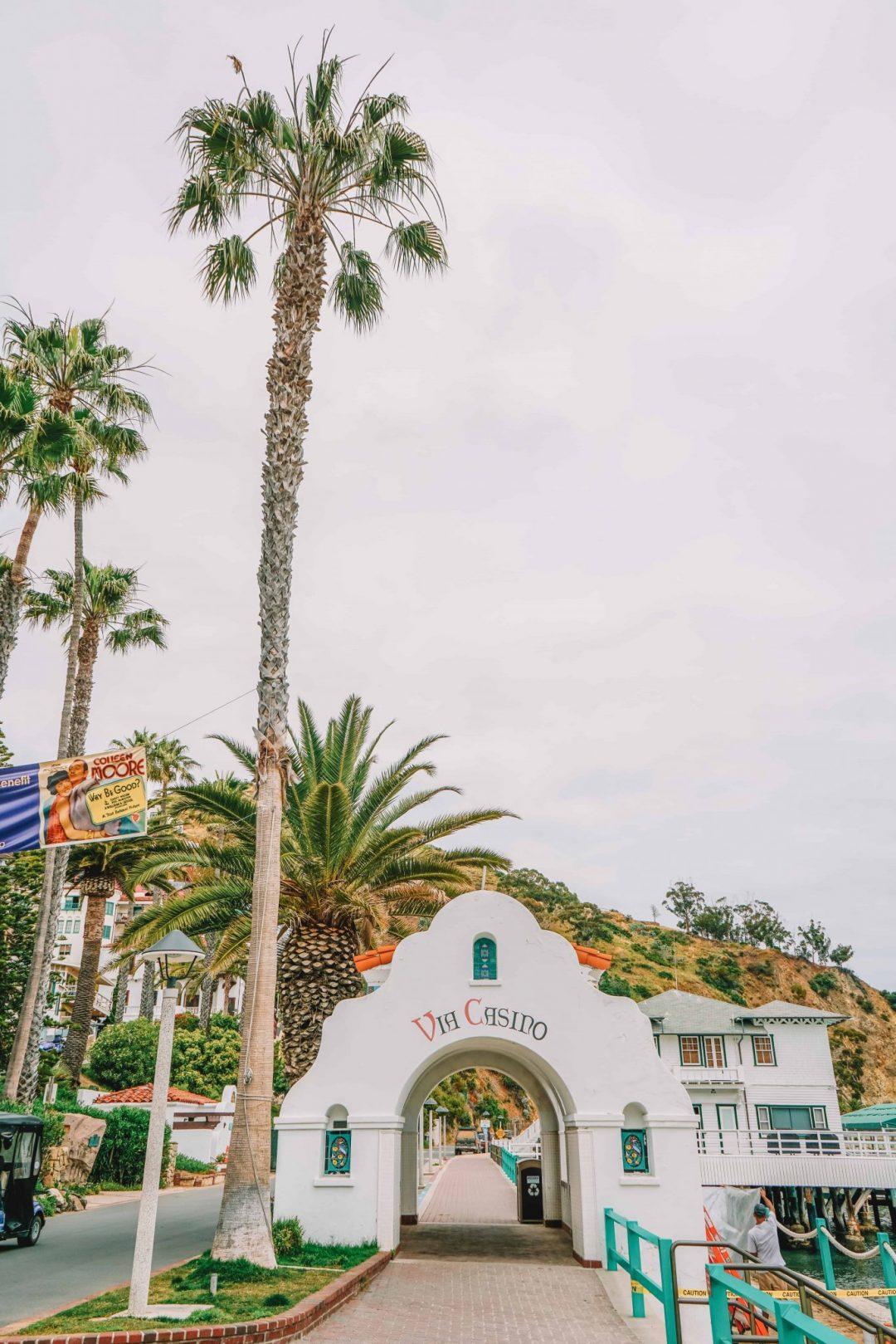 tours on catalina island