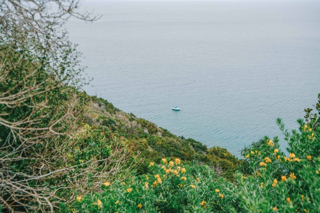 best time to visit catalina island