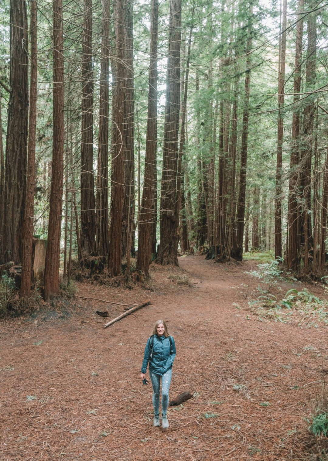 hiking in Santa Cruz, California