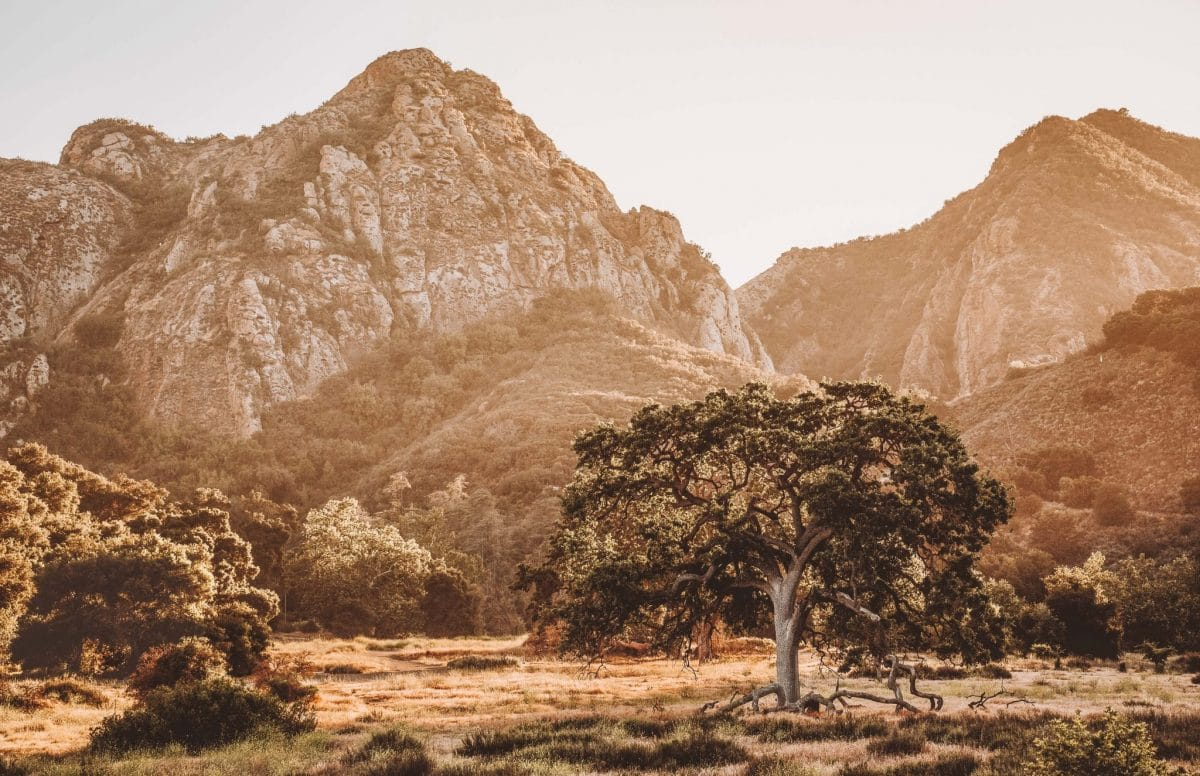 Malibu Creek Park in California is hidden in the Santa Monica Mountains just north of Los Angeles by Pacific Coast Highway. Great for outdoor adventures, hikes, wildlife, waterfalls, and sunsets.