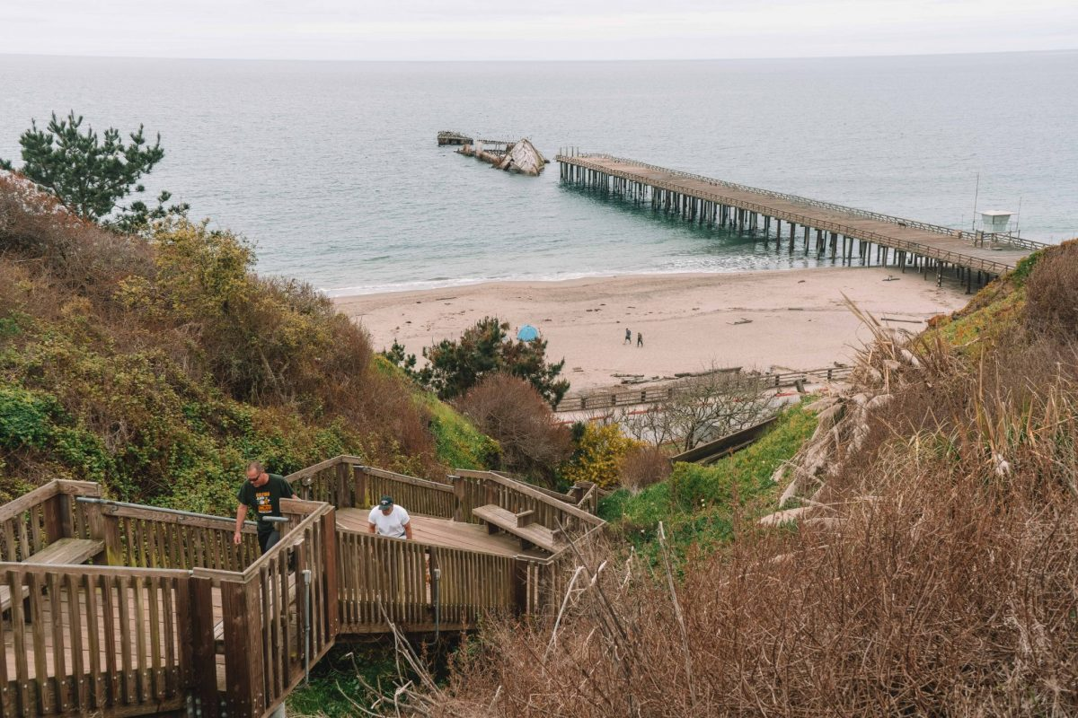 Seacliff Beach, SS Palo Alto