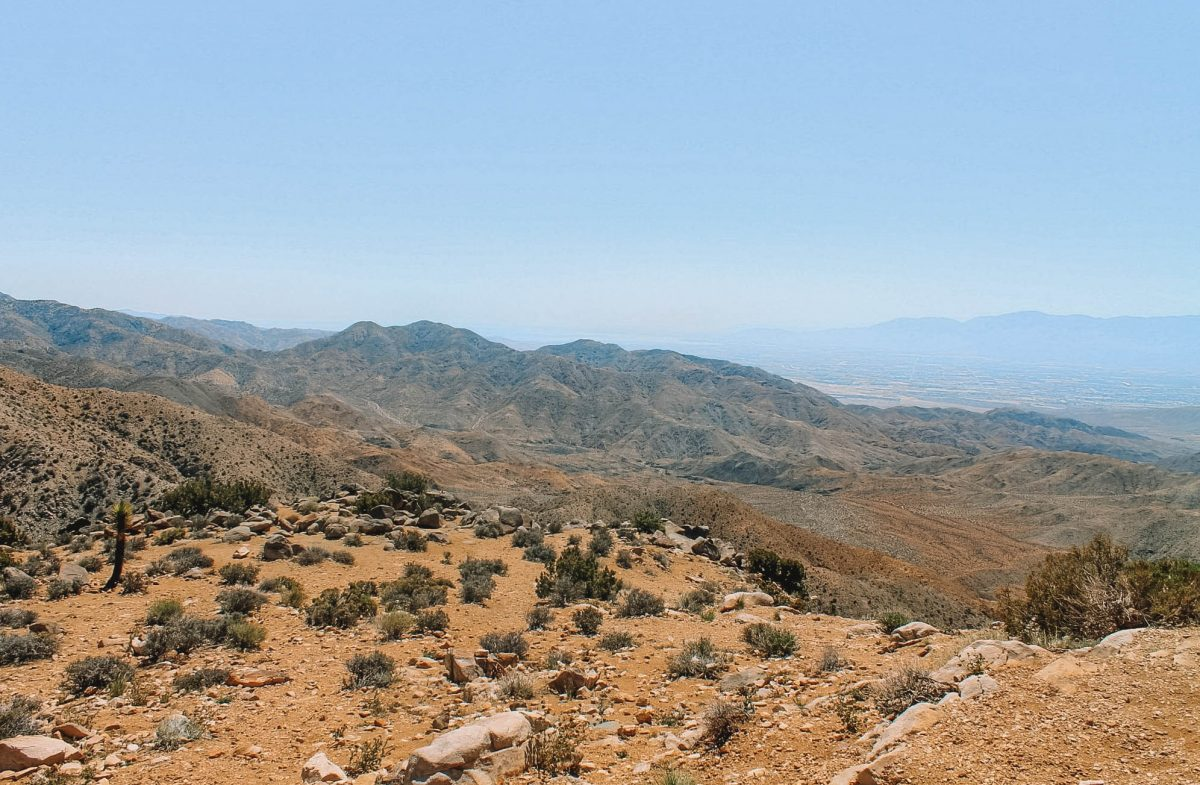 Take in the Scenery from Keys View
