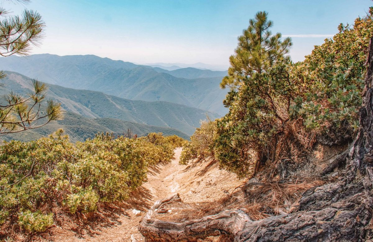 Tips for Hiking in Orange County Holy Jim Trail