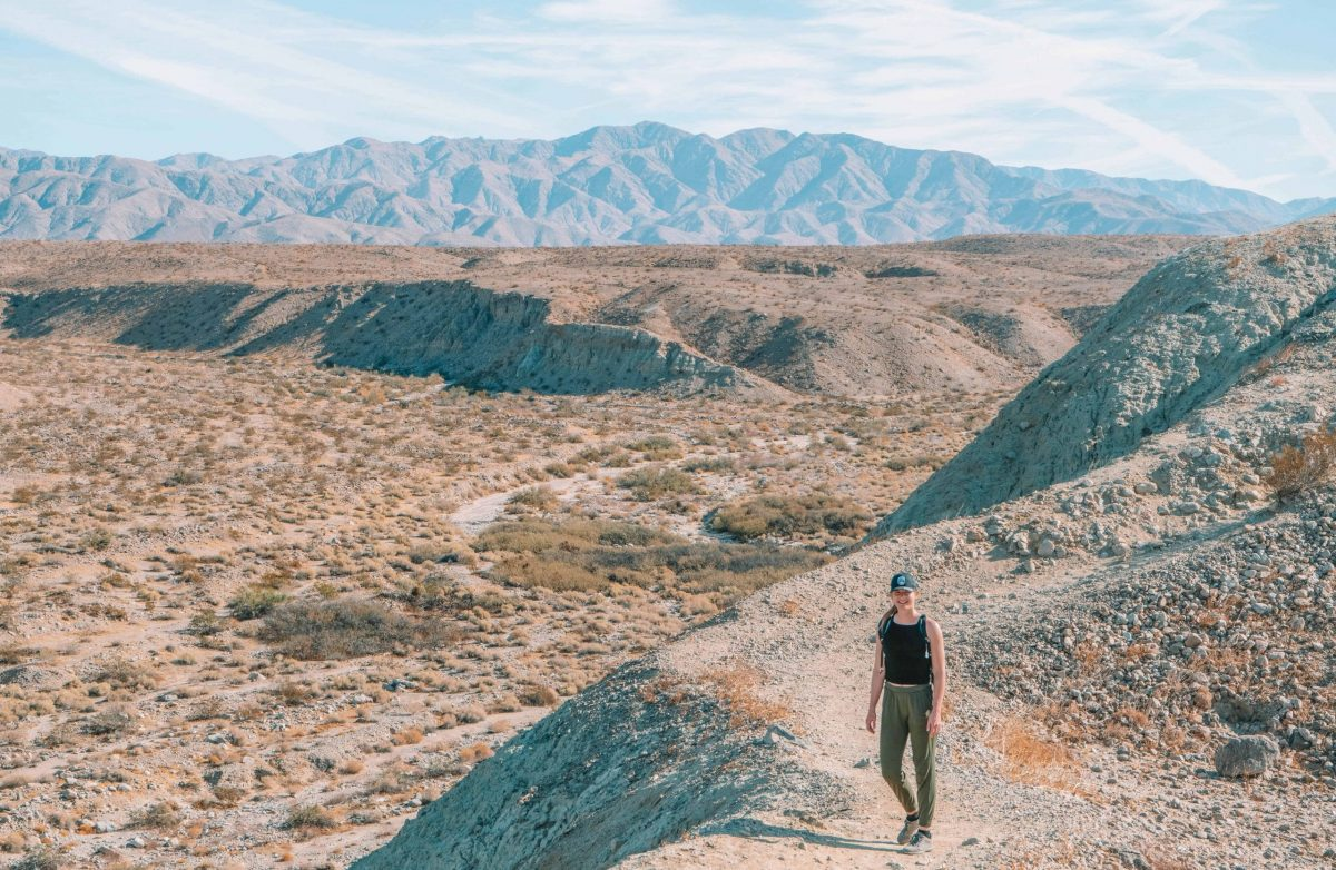 hiking in Palm Springs at Coachella Valley Preserve
