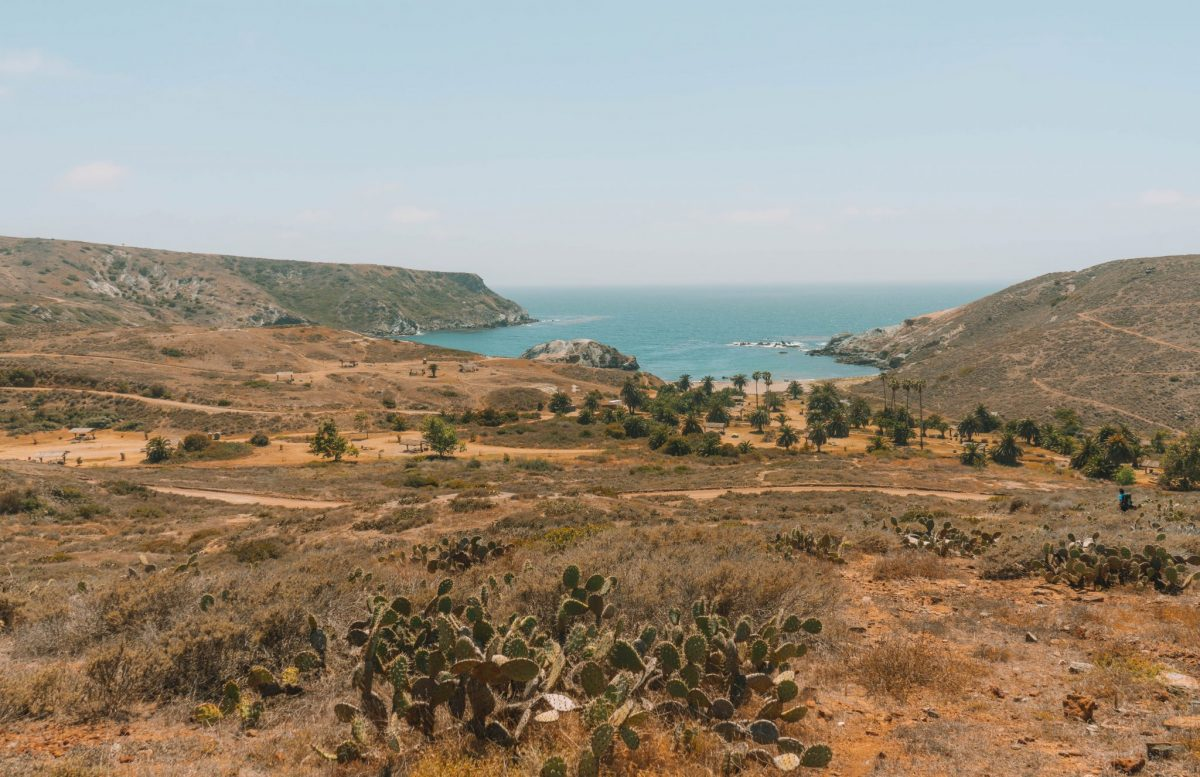 Two Harbors to Little Harbor Hike