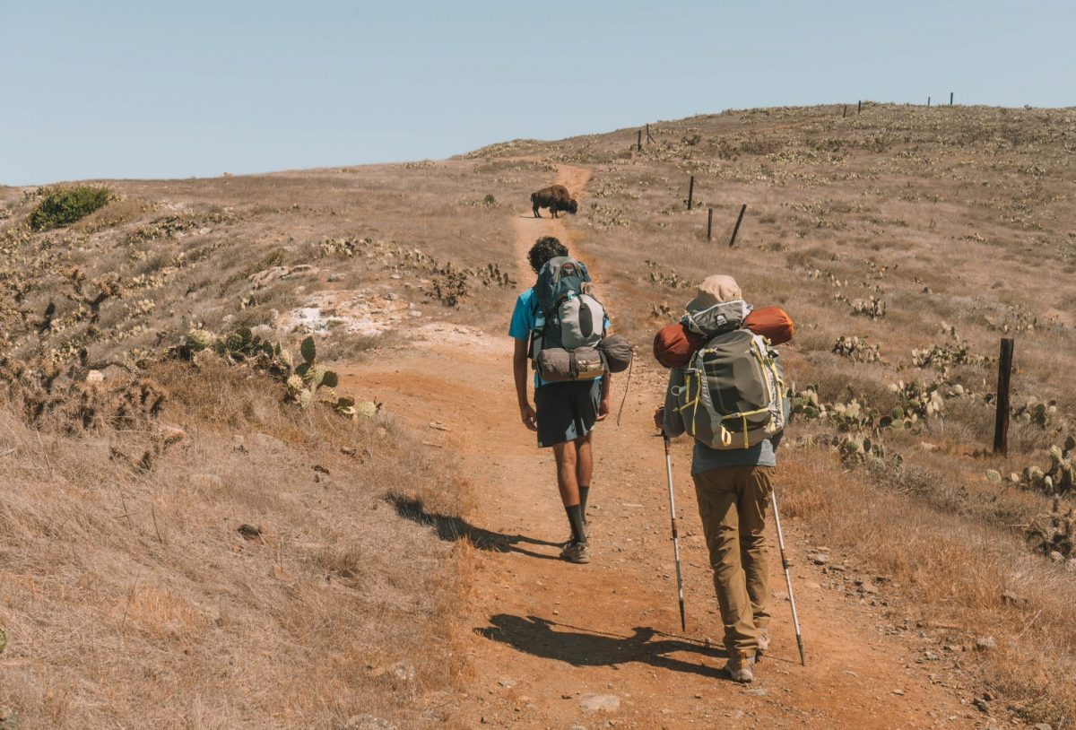 tips for hiking catalina island