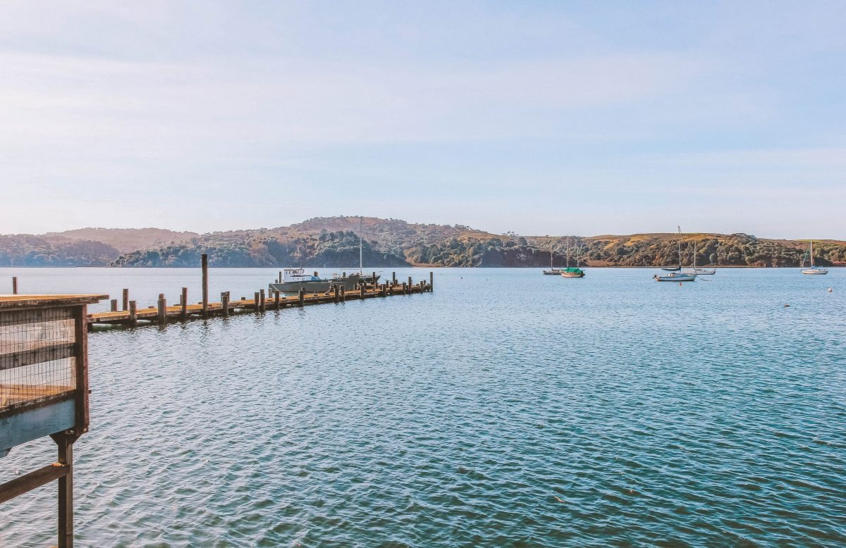 view of tomales bay from the marshall store