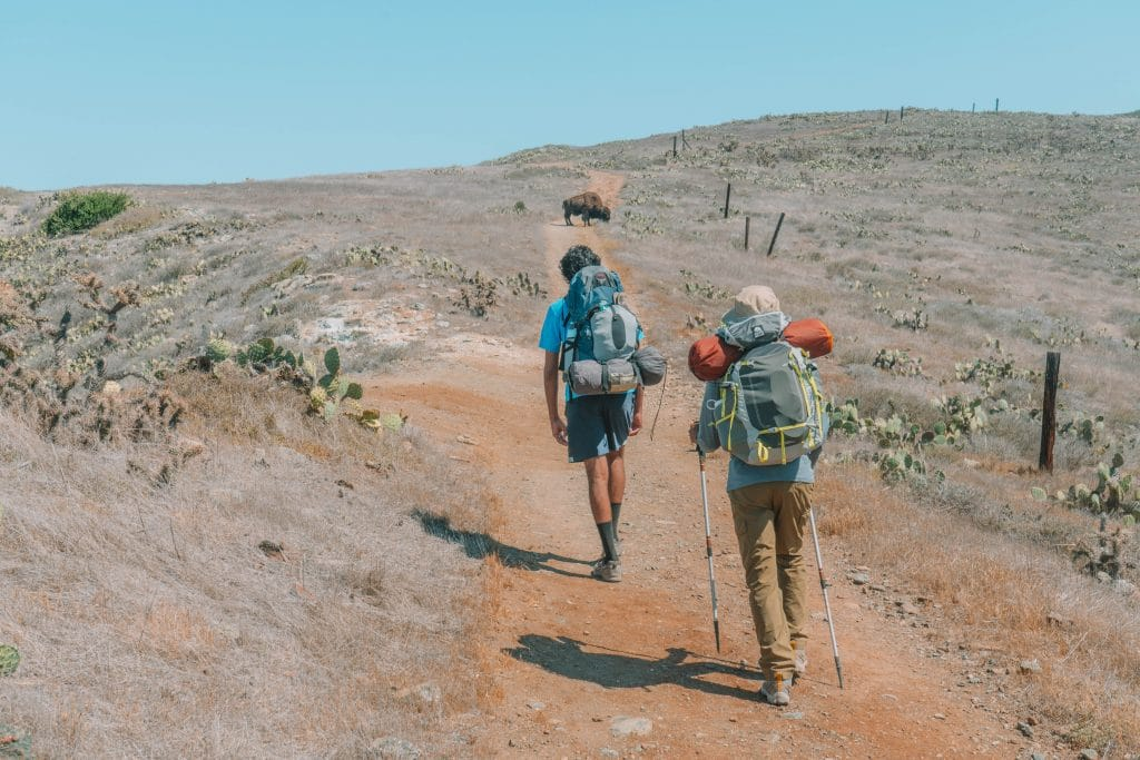 backpacking the trans-catalina trail on catalina island