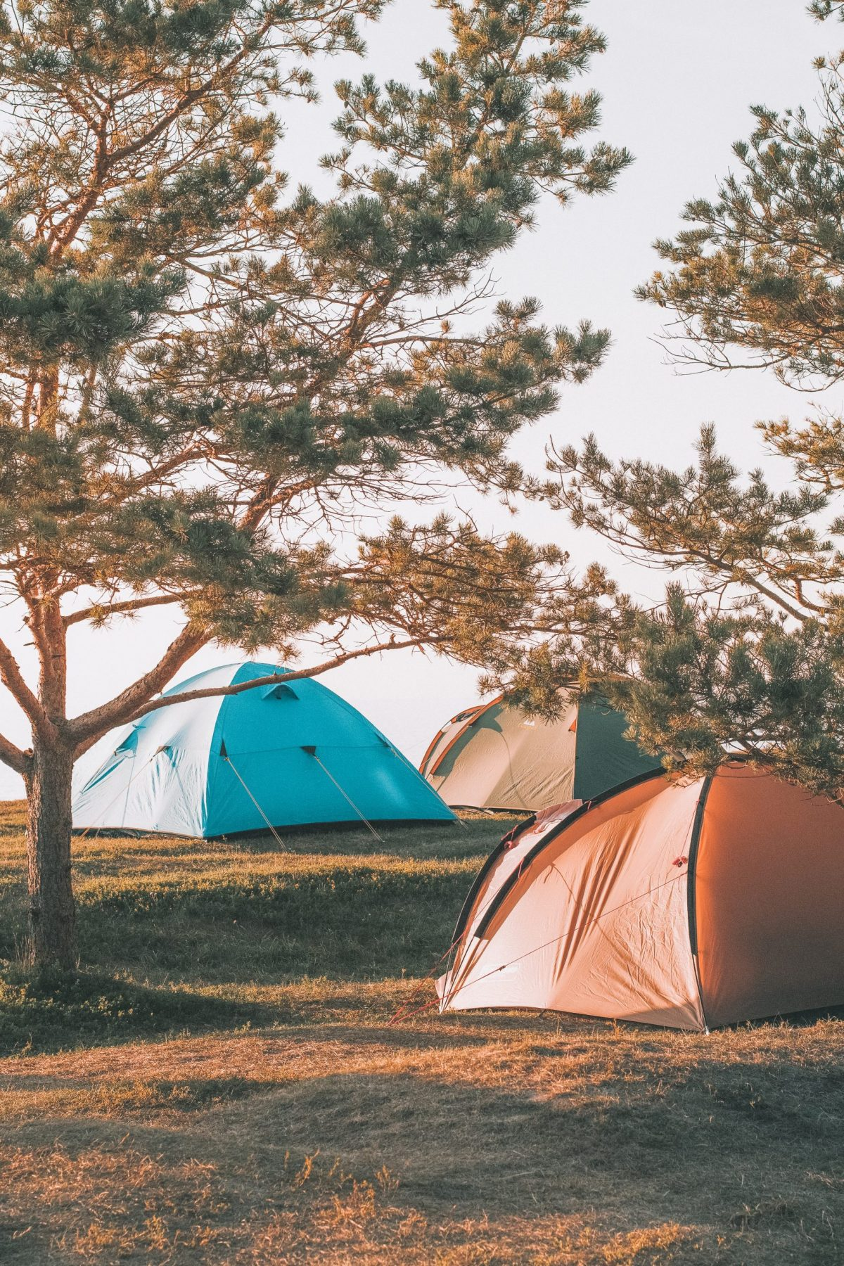 Gift Ideas for Campers - Camping Gear