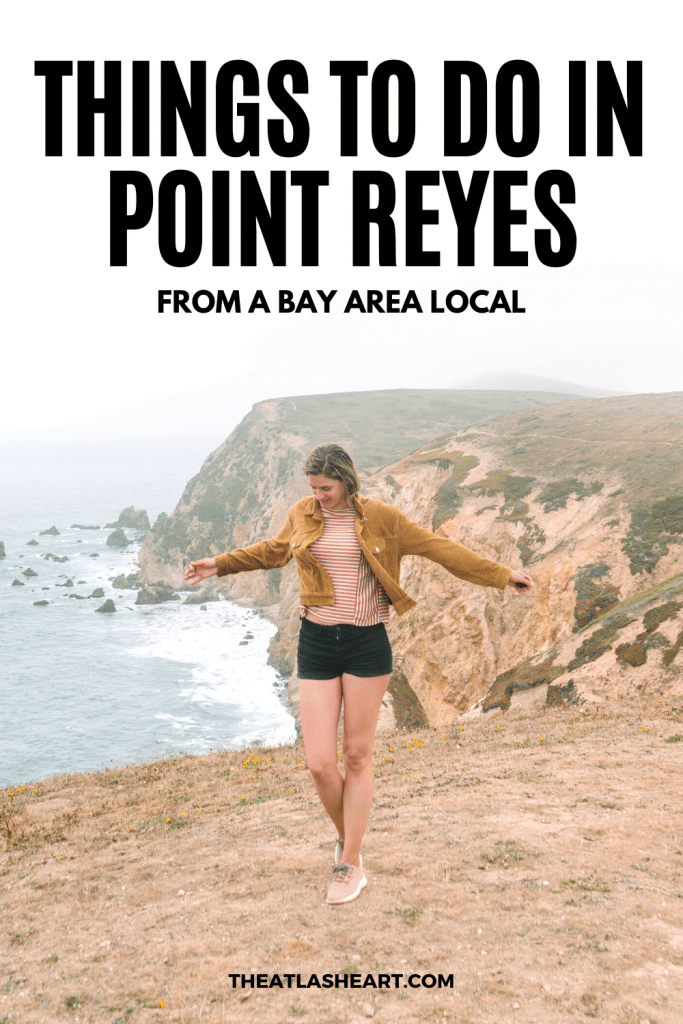 Things to do in Point Reyes Pin1