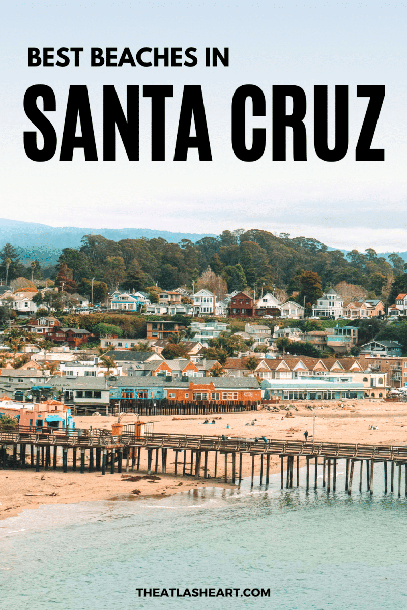 Best Beaches in Santa Cruz, California Pin 1