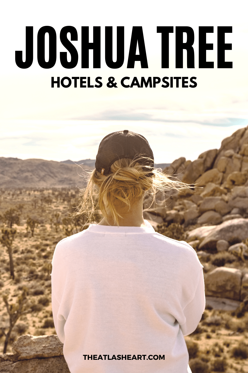 12 Best Joshua Tree Hotels & Campsites for Every Budget