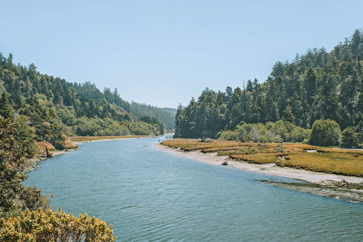 The Wide Expanse Of The Big River In Mendocino County Kayak or Canoe