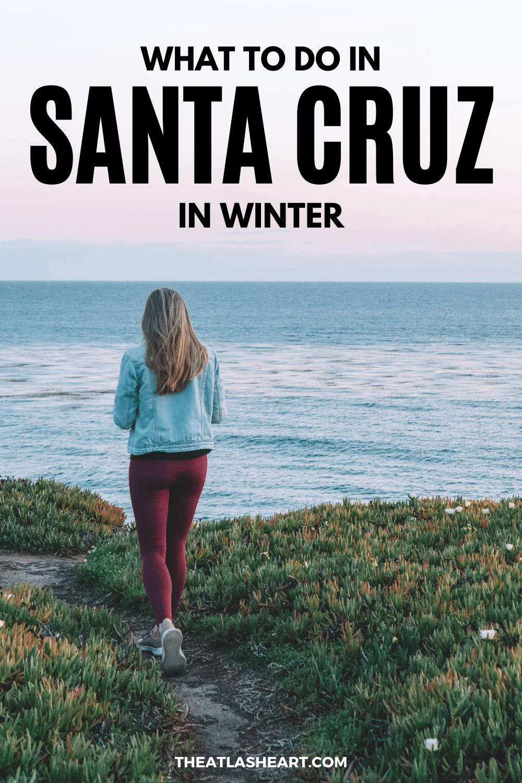 What to Do in Santa Cruz in Winter