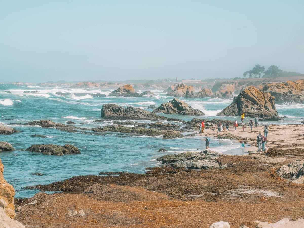 Where to find tide pools near Mendocino