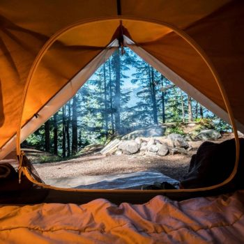 best 4 person tent